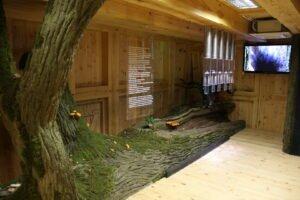 1 Ośrodek Edukacji Leśnej Łysy Młyn (fot. Artur Napierała)