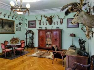 9 Muzeum Przyrodniczo-Łowieckie W Uzarzewie (fot. Piotr Basiński)