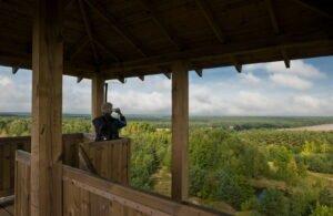 Widok Z Wieży Widokowej W Mosinie (fot. Piotr Łysakowski)
